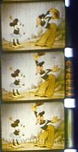 "Obr.7. Jediná barevná zvuková 16mm kopie 16obr/sec ""Mikyův sok"".  Materiál sedm let prošlý barevný negativ AGFA , vyvolaný inverzně. Magnetický zvuk-vývojový vzorek laku VÚZORT s jehličkovými oxidy."
